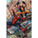 Marvel Artwork on Sale Marvel Artwork on Sale Astonishing Spider-Man and Wolverine #1 - Signed by Stan Lee!