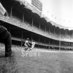 Sports Memorabilia & Collectibles Sports Memorabilia & Collectibles Autumn In The Bronx, 1949