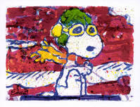 Tom Everhart Prints Tom Everhart Prints Low Fat Meal Over Santa Monica