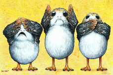 Star Wars Artwork Star Wars Artwork Porg No Evil