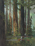 Star Wars Artwork Star Wars Artwork Forest Pursuits