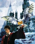Harry Potter Artwork Harry Potter Artwork Harry and Hedwig - Signed by Daniel Radcliffe!