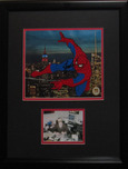 Spiderman Deluxe Framed, Signed by Stan Lee