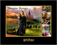 Harry Potter Artwork Harry Potter Artwork Hermione Granger