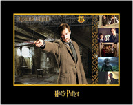 Harry Potter Artwork Harry Potter Artwork Remus Lupin