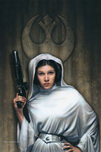 Star Wars Artwork Star Wars Artwork Rebel Princess