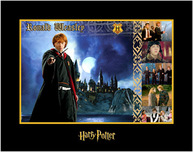 Harry Potter Artwork Harry Potter Artwork Ronald Weasley