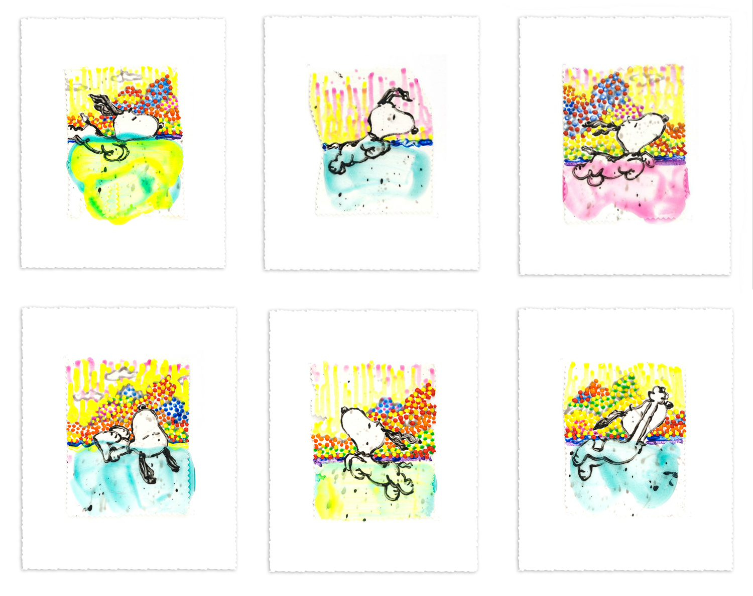 Tom Everhart Dogg E Paddle SUITE