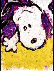 Tom Everhart Fall